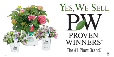 Drew's Garden proudly features Proven Winners Brand